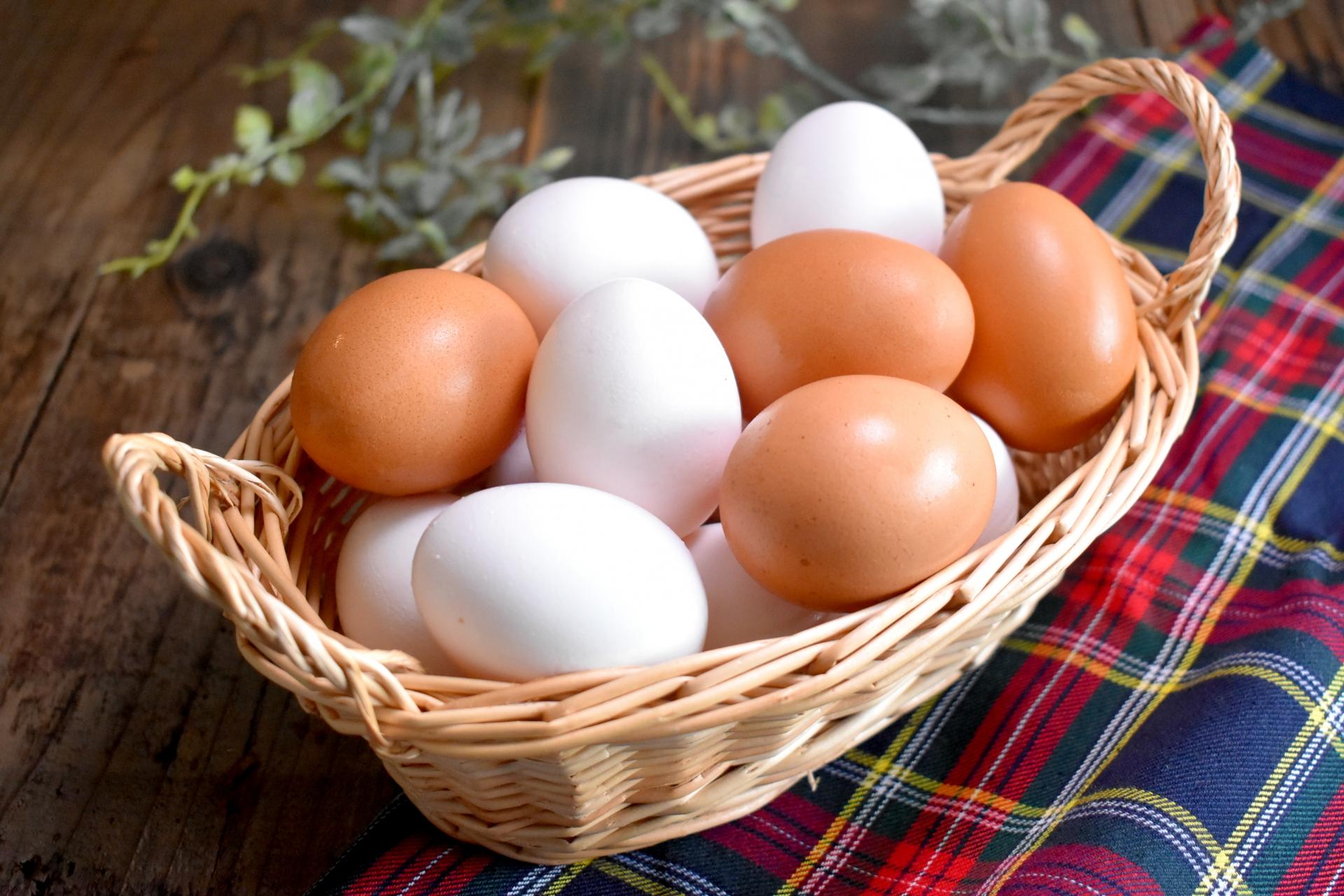 卵の賞味期限っていつ?調理方法別の期限と正しい保存方法3つ徹底解説!
